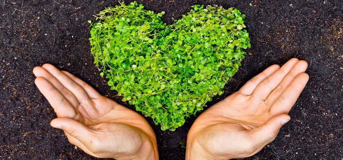 چگونه خود را برند دوستدار محیط زیست نشان دهید؟